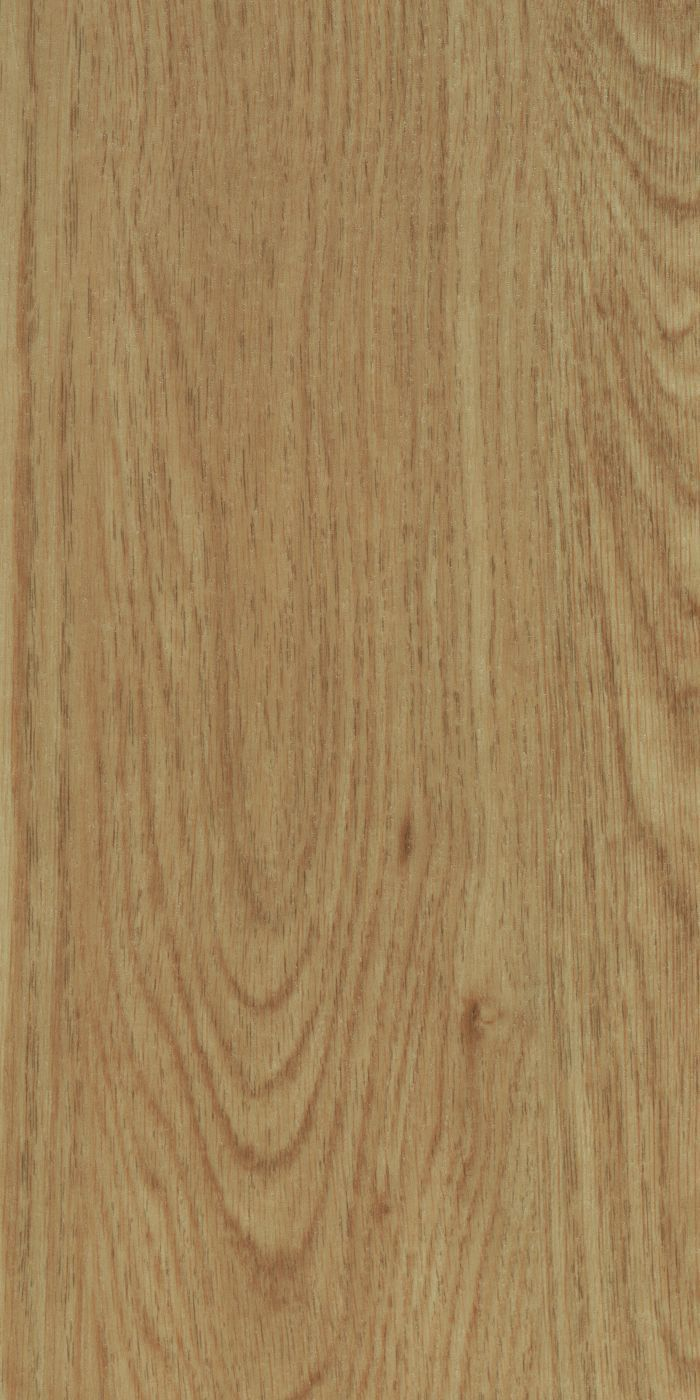 Allura Dryback  - Honey elegant oak Hout