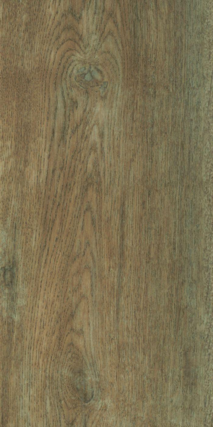 Allura Dryback  - Classic autumn oak Hout