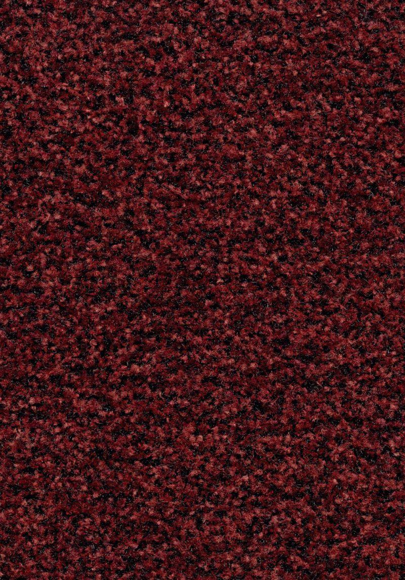 Coral Brush  - Brick red