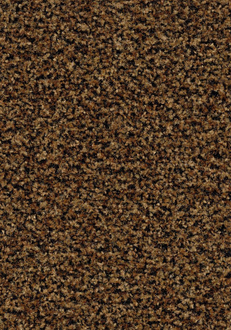 Coral Brush  - Masala brown