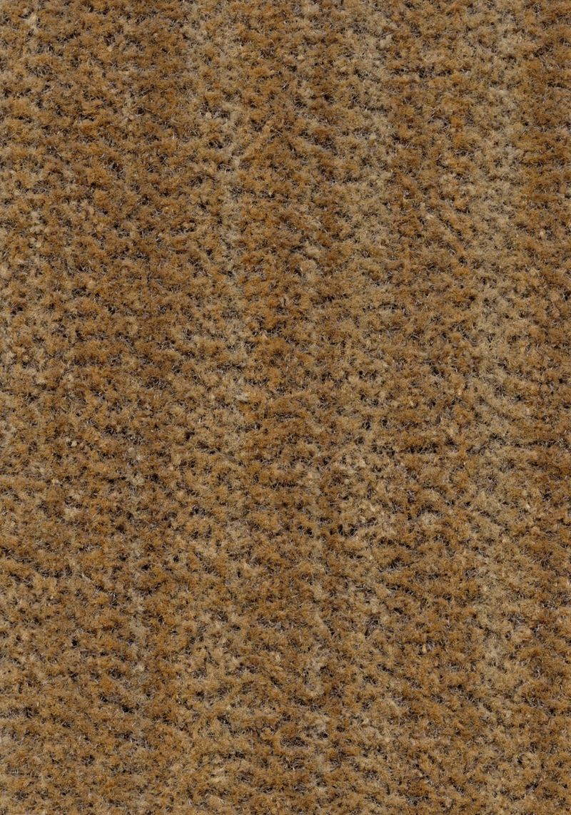 Coral Brush  - Straw brown