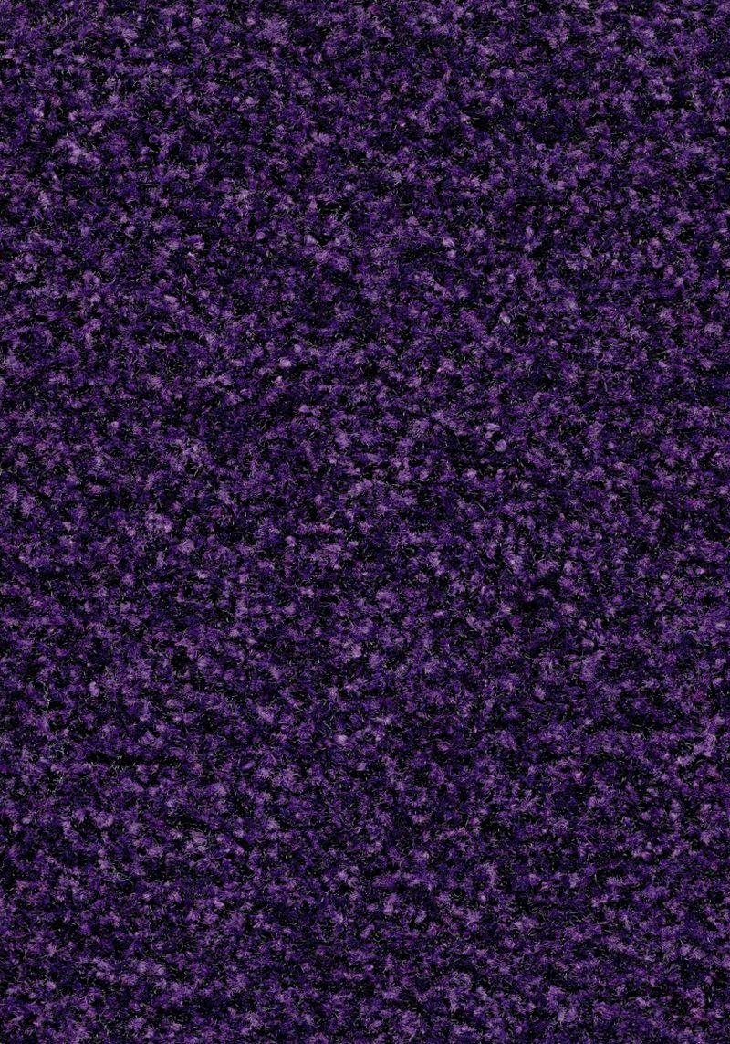 Coral Brush  - Royal purple