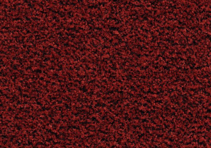 Coral Brush  - Cardinal Red